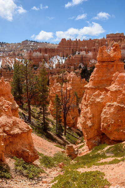 20160326 Bryce Canyon 154.jpg