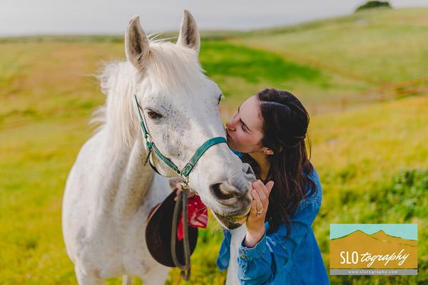 Carolynn's Horseys