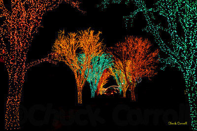 Lights on the Lake - Lakemont Park