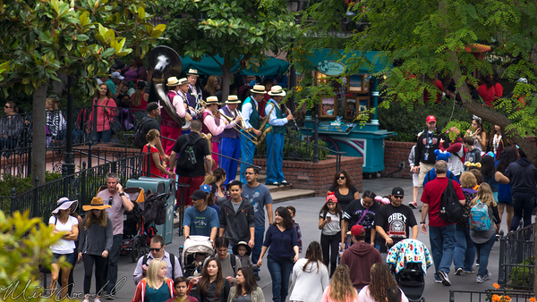 Disneyland Resort, Disneyland, Adventureland, Tarzan, Treehouse, New, Orleans, Square, Band
