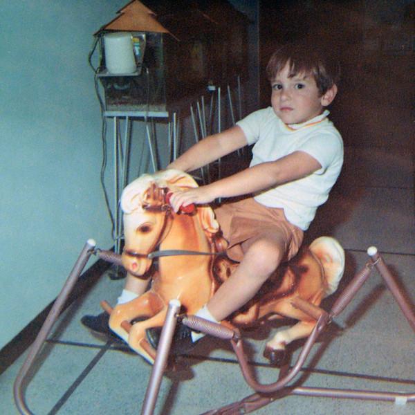 zevy horse.jpg