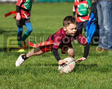 Llanelli Wanderers u8 Mini Tournament