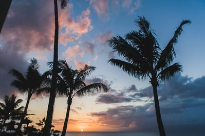 01 Maui Details