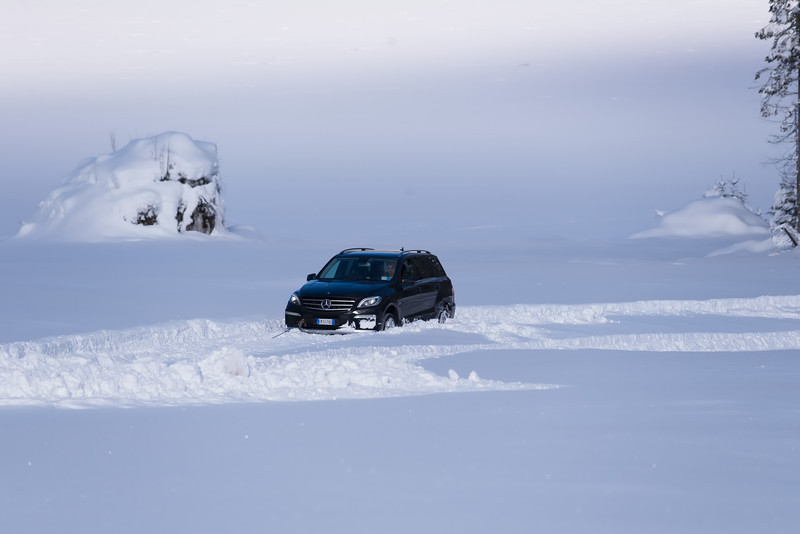 """Sposini che """"guida"""" o gareggia... con la Mercedes ML 63 Amg agganciata con il cavo al trattore.   Trattore che qui ha dovuto trascinare, piuttosto pateticamente e di peso, questa Mercedes, affondata nella neve fresca come un aratro. Vano il tentativo di compiere l'impossibile gara contro gli otto cani da slitta."""