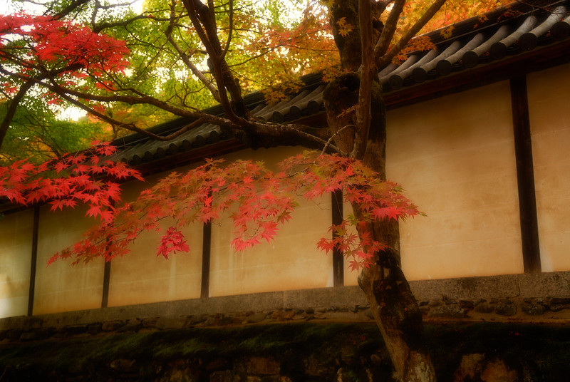 Nisonin Temple Grounds