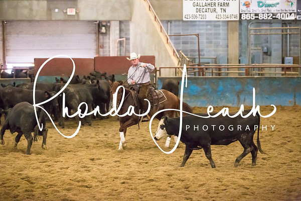 2018 Cutting Horse Events