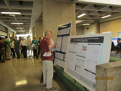 2013 Senior Thesis Poster Session