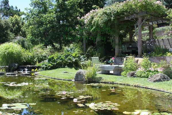 Paradise Drive Garden