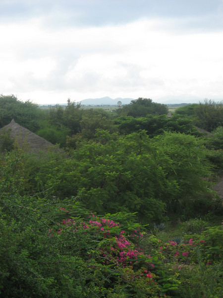 D1 Kia Lodge scenic 2.JPG