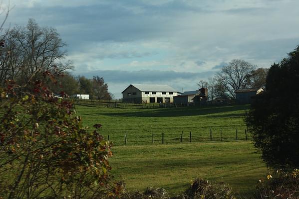 Thanksgiving Hunt - Lane 2009