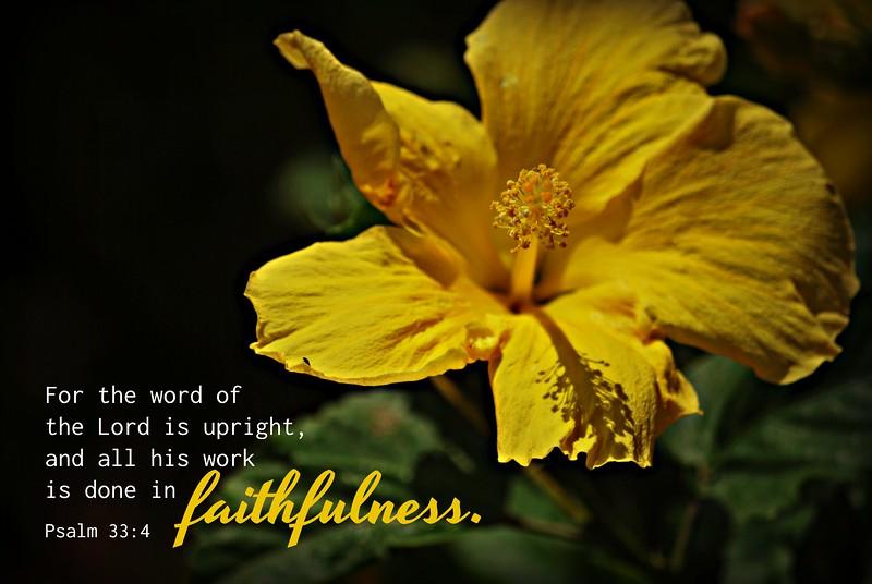 19_Psalm33-4_BS_2014-9-6.jpg