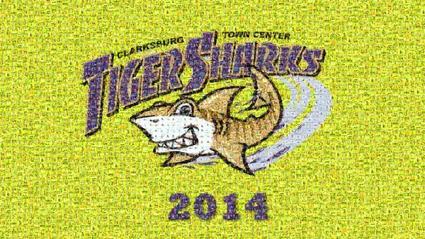 CTC Tiger Sharks 2014 Slideshow