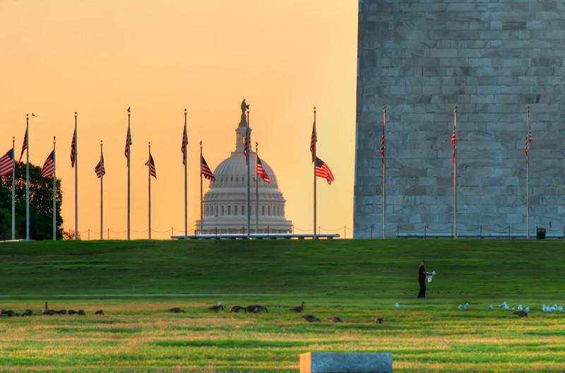 Orange Capitol.jpg