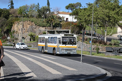 tctours2017 episode 12 - Madeira Buses