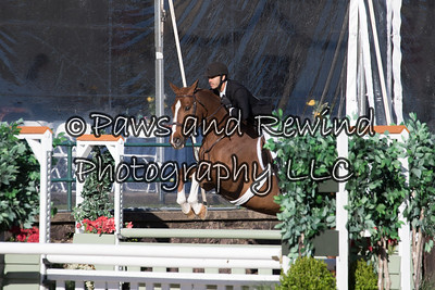 $10,000 Stal de Eyckenhoeve Hunter Derby 3'