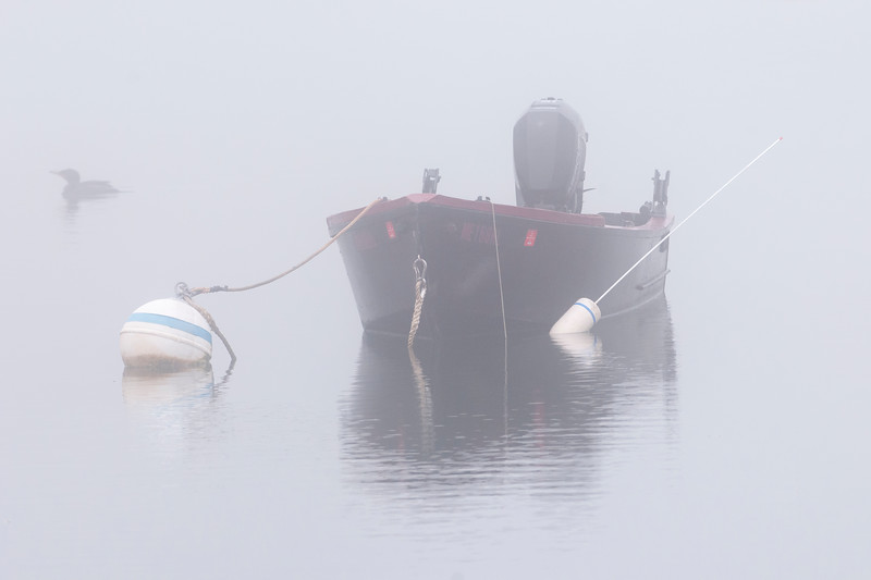 Maine Fishing Boat.jpg