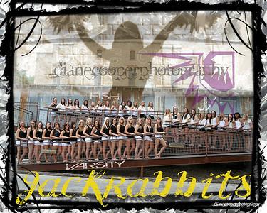 Forney High School 2012 Cheerleader Posters