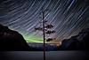 Mother Nature's Gift, Earth Day 2012, Lake Minnewanka, Banff National Park, Alberta, Canada.
