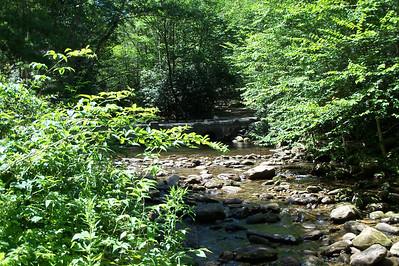 Camp Daniel Boone 7/18/2011