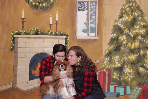 Holiday Pet Portraits 12.3.2019