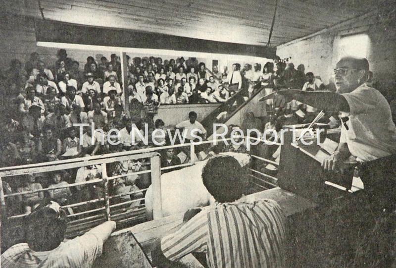 Look Back_livestock market.jpg