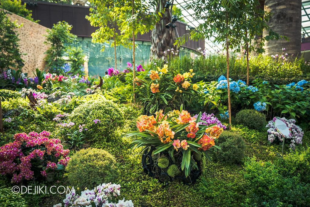 Gardens by the Bay Flower Dome - Orchid Extravaganza Floral Display 2017 / Outer Ring walk