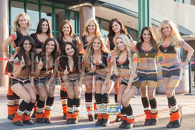 Anaheim Ducks Power Players 2014-15