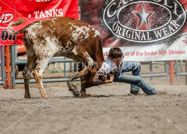 Junior Chute Dogging