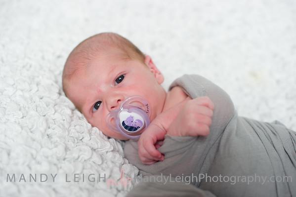 Scheper Newborn 2