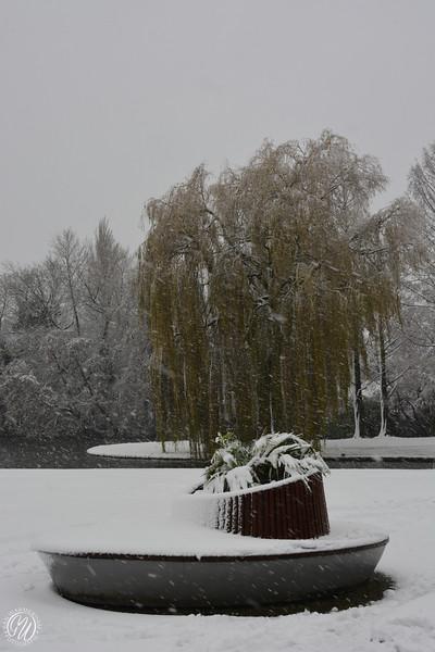 20171210 Winter in Zoetermeer GVW_9130.jpg