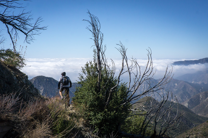 20181014116-Strawberry Peak, Gabrielino, CORBA_.jpg