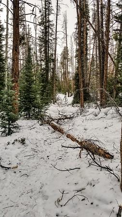 2019-Nature