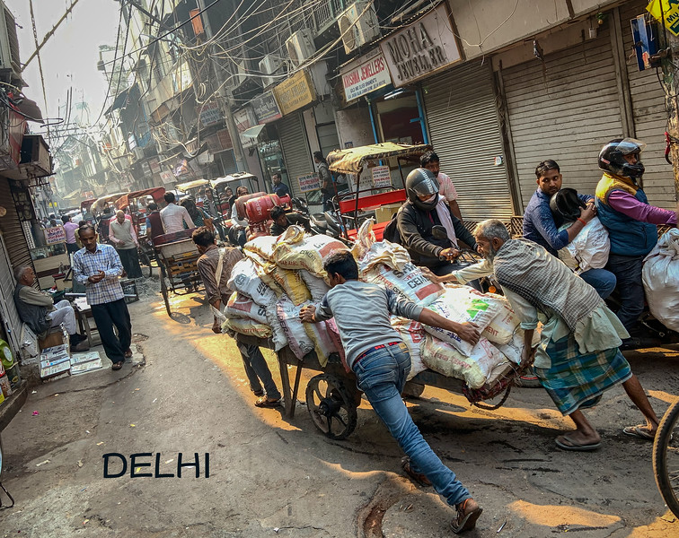 India-Delhi-2019-7008-TITLE.jpg