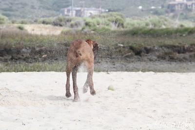 03.30.2011 Seger Beach
