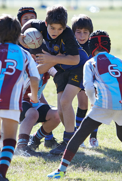 1193_09-Nov-13_RugbyOrcasitas.jpg