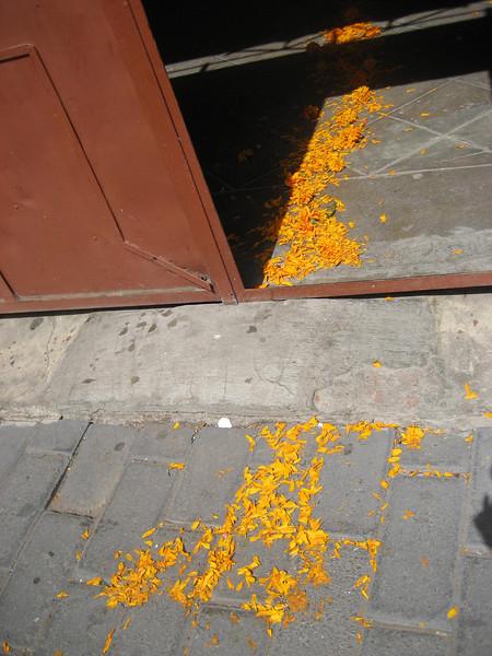 2008.11 Dia de los Muertos 059.jpg