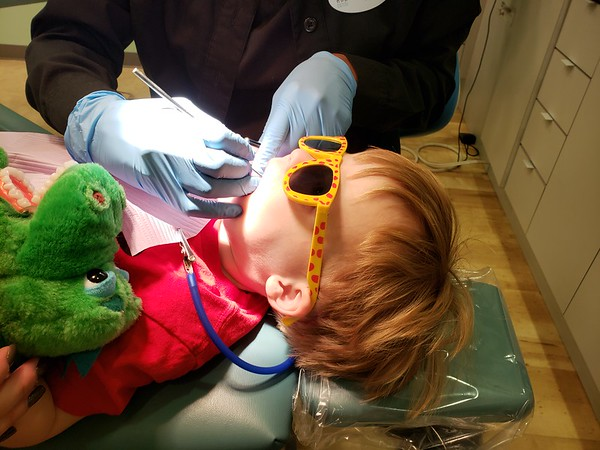 Stephen's first dentist cleaning