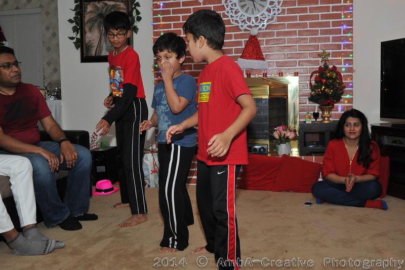 2014-12-28_Xmas@MadhusreeParthoHomeDobbsFerryNY_153.jpg