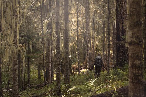 Idaho Elk Hunt