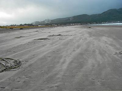 061126 Blowing Sand on Seaside Beach Snapshot Gallery