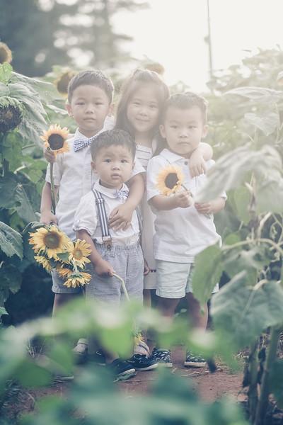 2019_07_14 Sunflower Farm-8178.jpg