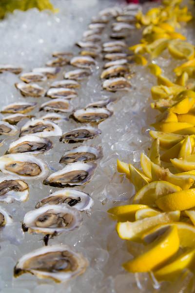 oysterfest-7528.jpg