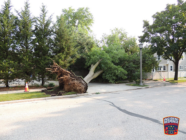 Storm damage in Milwaukee County on August 12, 2021
