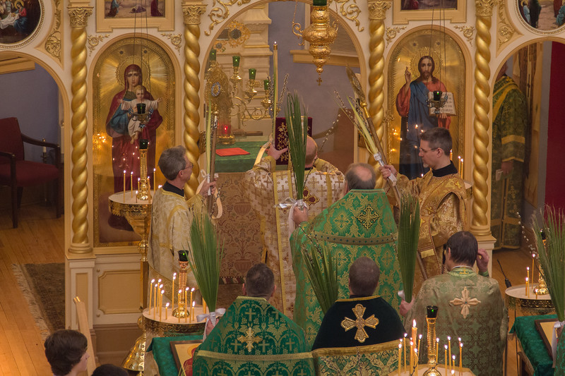 Palm Sunday Divine Liturgy 2017