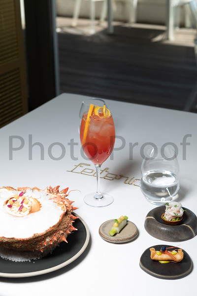 BIRDSONG Schweppes Cocktails 027.jpg