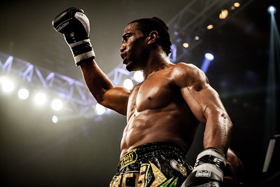 MMA / Kickboxing