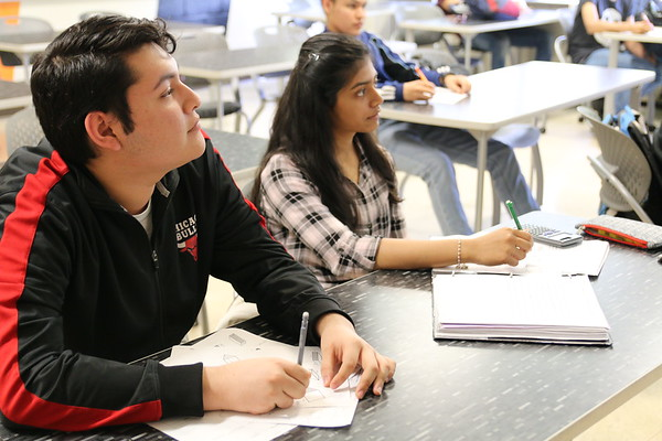 D155 Language Academy