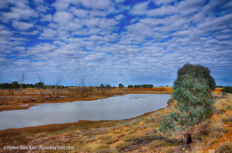 Australia-Queensland-Charleville- copy.jpg