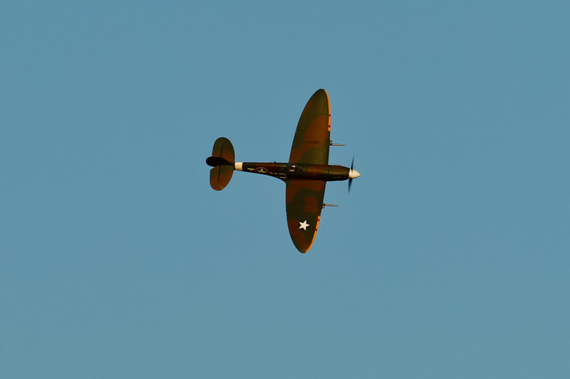 PZ_Spitfire_24.jpg