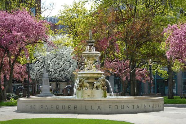 Central Park - Spring